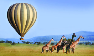 serengeti_balloon