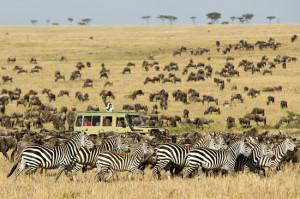 Serengeti-National-Park3