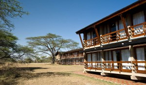 serengeti-wildlife-lodge